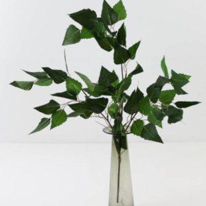 Grønne planter og trær